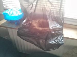 Bin bag